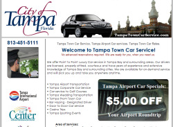 Tampa Limo Website Design
